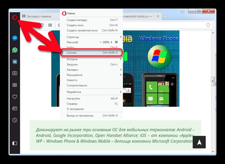 Скриншот в браузере Опера