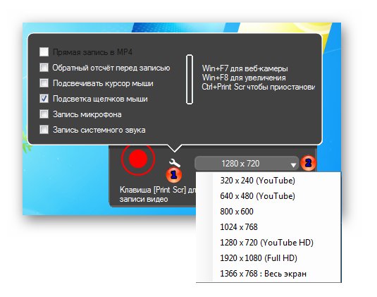 Форматы видео в программе Screenpresso