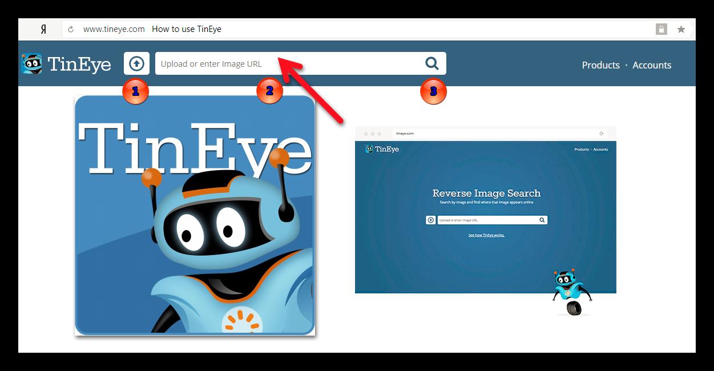 Сервис TinEye для поиска похожих картинок в Интернете