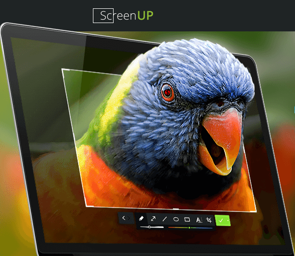 скриншотер ScreenUp